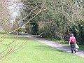 Farnham Park - geograph.org.uk - 746172.jpg