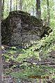 Felswand Backetrog Nationalpark Harz.JPG
