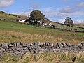Field below Mount Pleasant - geograph.org.uk - 1506716.jpg