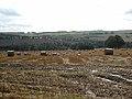 Field near High Well House - geograph.org.uk - 960059.jpg