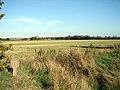 Field near West Mill - geograph.org.uk - 245099.jpg