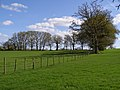 Fields north of Culverley Farm, New Forest - geograph.org.uk - 164212.jpg