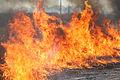 Fire in Wayne National Forest.jpg