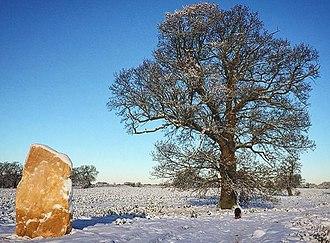 Soulton Long Barrow - Standing Stone One