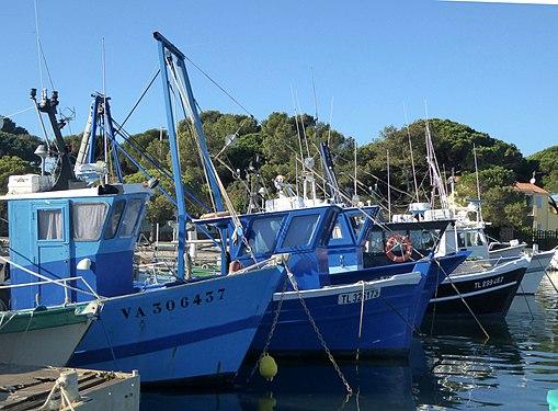 Fischerboote in Carqueiranne Frankreich.jpg