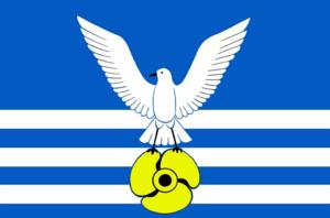 Bolshoy Kamen - Image: Flag of Bolshoy Kamen (Primorsky kray)
