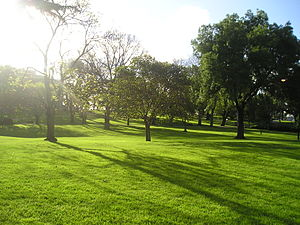 Flagstaff Gardens - Facing north east in the Flagstaff Gardens