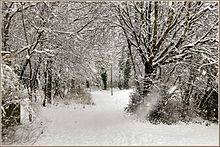 Flickr - ronsaunders47 - SNOWBOUND 1 IN CHESHIRE UK..jpg