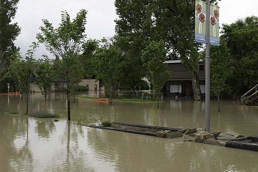 Flooded Kensington Homes, Calgary June 2013