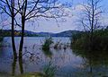 Flooded coast on the Mladost lake , Veles.jpg