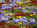 Flores sin fin II.jpg