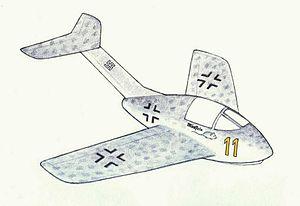 Emergency Fighter Program - Emergency fighters were beset by conceptual flaws such as a very limited endurance. The rocket-powered Focke-Wulf ''Volksjäger'' 2.