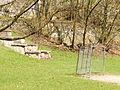 Football pitch at Park Bednarskiego.jpg