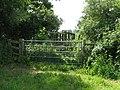 Footbridge over ditch - geograph.org.uk - 1353405.jpg