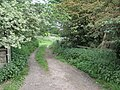 Footpath To Blaxton Common - geograph.org.uk - 184078.jpg