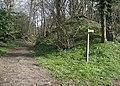 Footpath to Ringsfield Road - geograph.org.uk - 978165.jpg