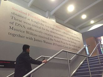 Rosalind Franklin - Mural inscription on King's College London's Franklin-Wilkins Building, co-named in honour of Rosalind Franklin's work