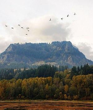 Franz Lake National Wildlife Refuge - Image: Franz Lake National Wildlife Refuge