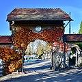 Friedhof Enzenbühl - Forchstrasse 2015-11-06 15-53-04.JPG