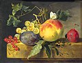 Fruit Still Life by Jan van Huijsum Mauritshuis 70.jpg