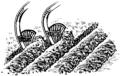Furrow (PSF).png