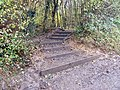 GOC Sandridge to Harpenden 183 Langley Wood, Heartwood Forest (8250047344).jpg