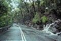 Galston Gorge.jpg