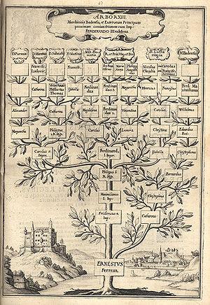 Stammbaum – Biologie