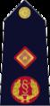 Garda Síochána-10-Deputy Commissioner.png