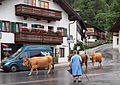 Garmisch-Partenkirchen 14.jpg