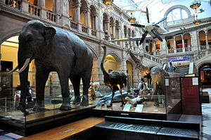 Kelvingrove Art Gallery and Museum - General internal view.