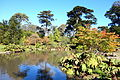 General view - San Francisco Botanical Garden - DSC09903.JPG