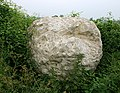 Giant chalk snowball - geograph.org.uk - 465013.jpg