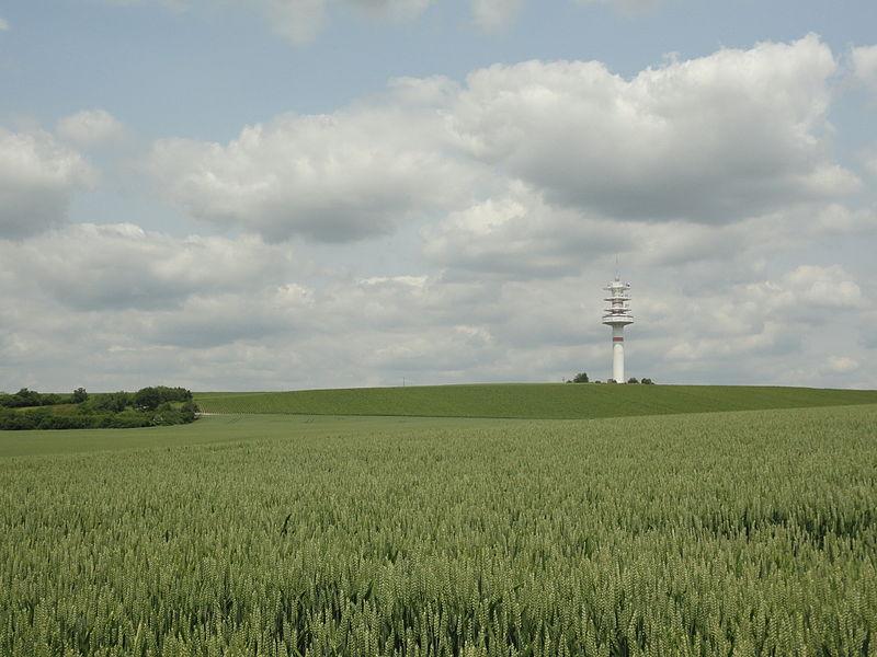 Vue depuis Glannes des vignes (Les Chaînées) et de la Tour de télécommunications du Mont Vignereux.