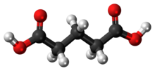 Glutaric acid 3D ball.png