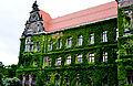 Gmach Muzeum Narodowego we Wrocławiu.jpg