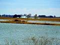 Goose Pond - panoramio.jpg