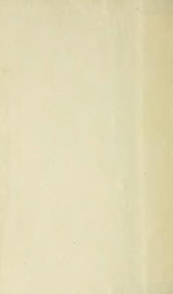 File:Got - Journal, t. 2, 1910, 2e éd.djvu