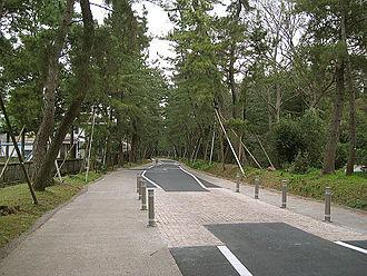 Tōkaidō (road) - Image: Goyu Matsunamiki Sidewalk