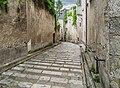 Grand Degres Saint-Louis in Blois 02.jpg