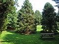 Graver Arboretum - 350.jpg