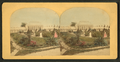 Greenhouse in the distance, by Boehl & Koenig.png