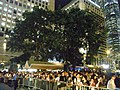 HK Central Statue Square Memorial 悼念菲律賓遇害香港市民 site water pool side visitors Candles night Aug-2010.JPG