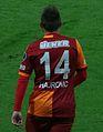 """Hajrovic """"14"""".JPG"""