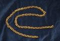 Halskedja av guld, Statens Historiska museums föremålsID 109173.tif