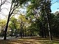 Hamm, Germany - panoramio (2388).jpg