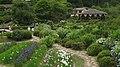 Hananosato-Takidani Japanese Iris Garden03.jpg