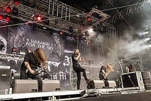 Harakiri for the Sky Party.San Metal Open Air 2018 29.jpg