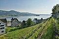 Haus zum Schlossberg - Curti-Haus - Endingen - Etzel - Lützelau - Schlossberg - Lindenhof Rapperswil 2015-05-27 18-35-53.JPG