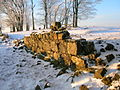 Hill of Beith Castle mortared walling.JPG